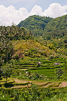 Looking over terraced rice fields up into the mountains Eastern Bali, Indonesia