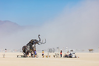 The Monumental Mammoth<br /> by: Girl Scout Gold Award Recipient Tahoe Mack, Mentor and Protector of Tule Springs Representative Sherri Grotheer, and artists Luis Varela-Rico and Dana Albany<br /> from: Las Vegas, NV<br /> year: 2019<br /> <br /> The Monumental Mammoth project will depict a life-sized steel Colombian mammoth skeleton collaged with metal found objects to tell the story of Tule Spring National Monument's past, present, and future. The sheer size and struggle of the mammoth's stance is a representation of the universal call to protect what the earth has given humanity. As a community, we are called together to protect the fossils of our past and the education of our future. Dana Albany and Luis Varela-Rico are pulling together the sleek elements of the interior steel structure and the intricate weavings to represents the distinctive community that is Las Vegas.It also tells the story of a rising feminine power, and shows all women of any age that anything is possible!<br /> <br /> URL: https://tulemammothproject.wordpress.com<br /> Contact: tulemammothproject@gmail.com<br /> <br /> https://burningman.org/event/brc/2019-art-installations/?yyyy=&artType=H#a2I0V000001AVtMUAW