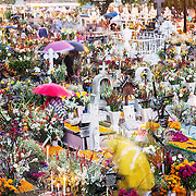 Dias de los muertos, Mexico, Reportage, Dia de los Muertos, Mixquic, Tepozlan, DF