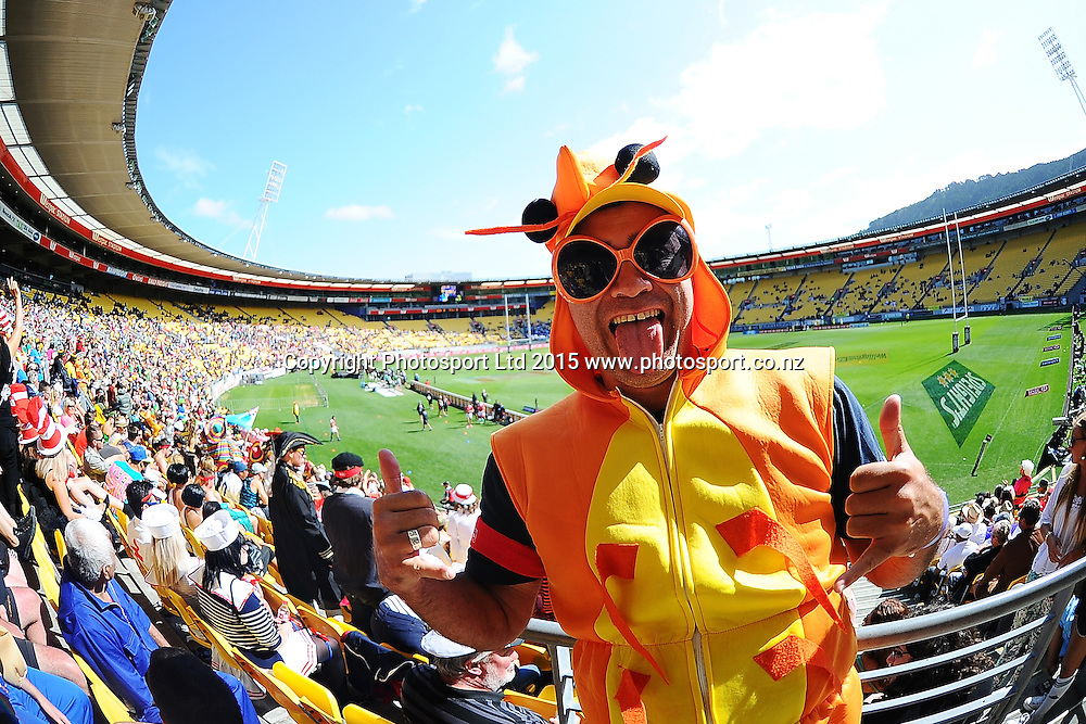 Fans during play on Day 2 of the IRB Sevens Series Rugby Tournament, Westpac Stadium, Wellington, New Zealand. Saturday 7 February 2015. Copyright Photo: Mark Tantrum/www.Photosport.co.nz