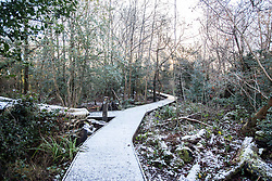 © Licensed to London News Pictures. 14/01/2015.  Moseley, Birmingham.  Thick frost covers the walk ways this morning in Moseley Bog.  Forecasters have predicted a week of snow and frost  across the West Midlands over the next 7 days.   Photo credit : Alison Baskerville/LNP