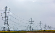 Pylons acorss the coiuntryside in Suoth Kent.