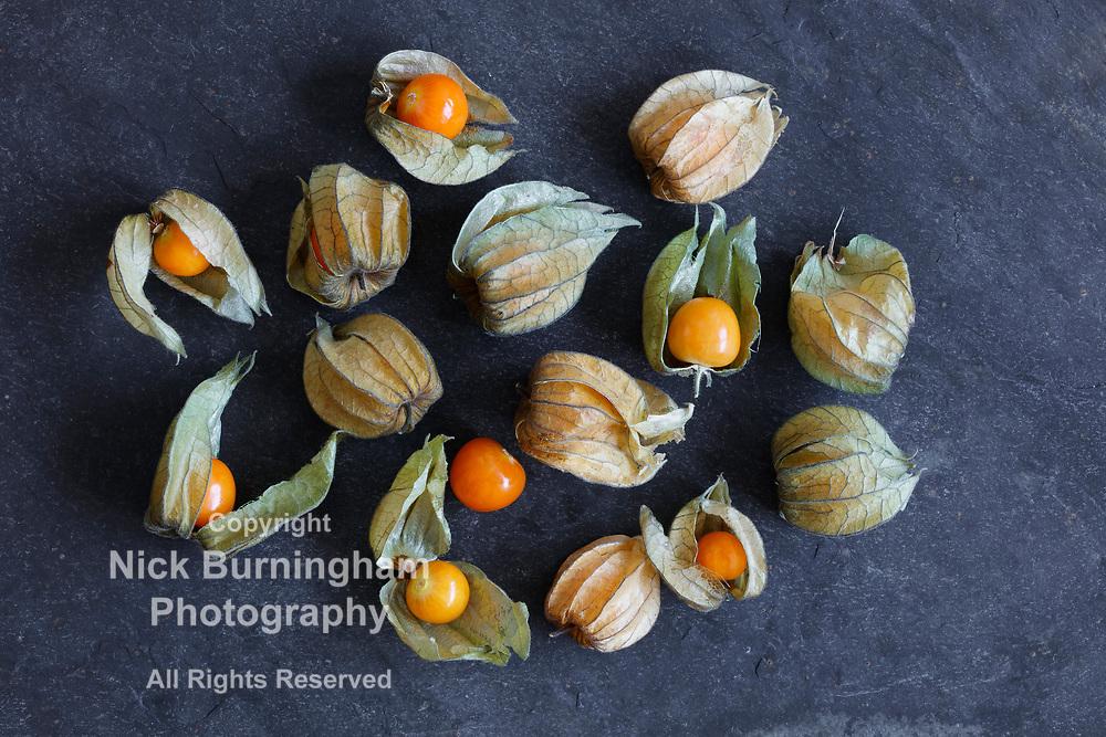 Arrangement of physalis fruit, Cape Gooseberries, on natural slate background - centered group