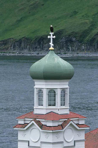 Bald Eagle, (Haliaeetus leucocephalus)  Adult sits on top of the Russian Orthodox Church. Dutch Harbor, Alaska. Aleutian Islands.