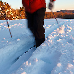 A man cross-country skiing in a  field at the Notchview Reservation in Windsor, Massachusetts. The Trustees of Reservations.