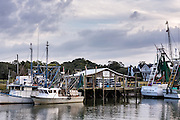 Shrimp boats docked along Shem Creek in Mount Pleasant, South Carolina.