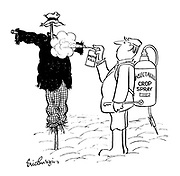 (A farmer spraying moth killer onto the clothes of a scarecrow)