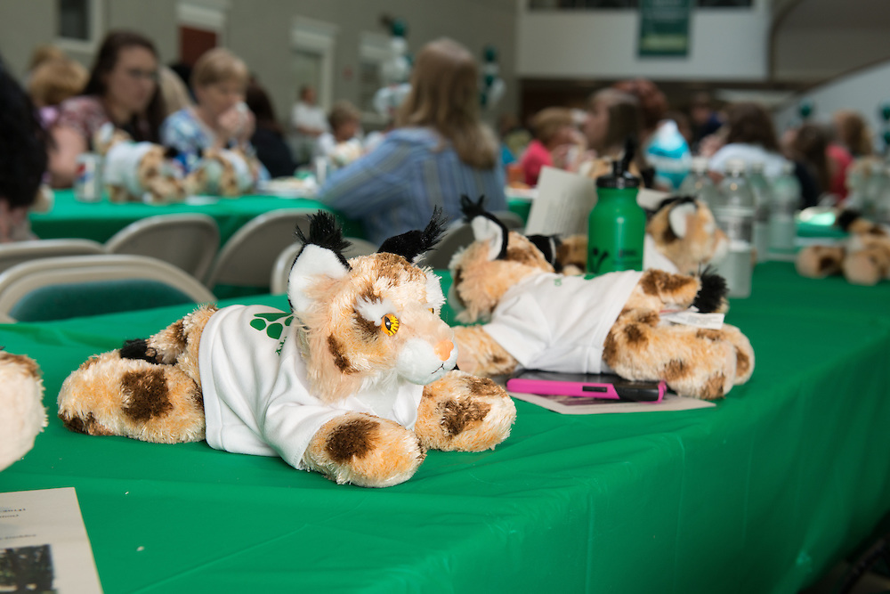 Party favors at the 25 anniversary of the Classified Senate at Ohio University. Photo by Ben Siegel/ Ohio University
