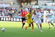Swansea city's Michu ® is held back by Reading's Adrian Mariappa (l). Barclays Premier league, Swansea city v Reading at the Liberty Stadium in Swansea, South Wales on Saturday 6th October 2012.   pic by  Andrew Orchard, Andrew Orchard sports photography,