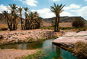 MOROCCO, SAHARA DESERT desert oasis west of Ouarzazate, south of the High Atlas Mountains