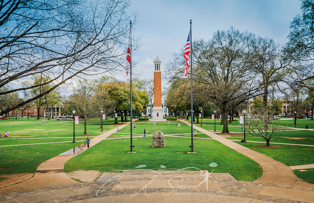 Denny Chimes and the University of Alabama's quadrangle is seen from the steps of the Amelia Gayle Gorgas Library, March 16, 2014, in Tuscaloosa, Alabama. The quadrangle, known as The Quad, offers 22 acres of green space for student recreation and relaxation. It is a central part of student life on campus and is the site of bonfires, pep rallies, and impromptu games of frisbee and mud football. Denny Chimes, seen by many as the defining characteristic of the university, is a 115-foot, Art Deco bell tower named for George H. Denny, who served as the UA president from 1912-1936 and again in 1941. (Photo by Carmen K. Sisson/Cloudybright)