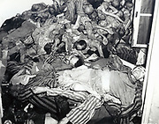 Nazi cruelty in Dachau.