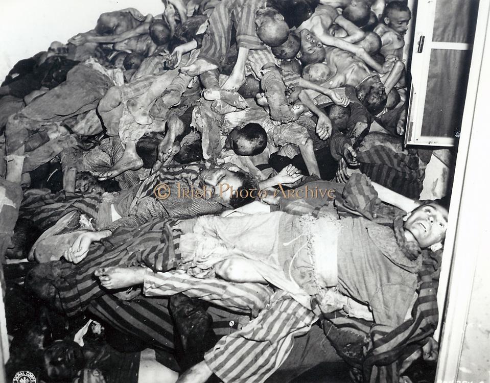 Nazi cruelty in Dachau.
