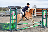 07 - 26th Jan - Show Jumping