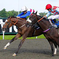 Novel Dancer and Jenny Powell winning the 5.40 race