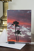 Photo greeting card bright pink sunset, palm trees Santa Monica, California, purple sky, beach life. West LA card, paper goods, Los Angeles, Southern CA.