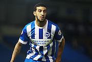 Brighton defender Connor Goldson during the Sky Bet Championship match between Brighton and Hove Albion and Brentford at the American Express Community Stadium, Brighton and Hove, England on 5 February 2016. Photo by Bennett Dean.