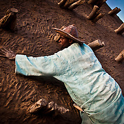 Crepissage festival . Restoration with fresh mud of t he Sankore mosque C.Built in 15th-16th centuries . Timbuktu city. Timbuktu region. Mali.