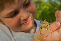 A 7 year-old boy looking at a Pine Woods Treefrog (Myla femoralis)..Everglades National Park, Long Pine Key.