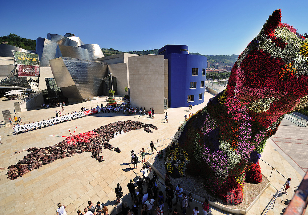 "Members of Anima Naturalis, Equanimal foundation and CAS-International pro animal groups create a giant bull shape with their bodies covered in paint during a protest against bullfighting, next to Jeff Koons' work ""Puppy"", in front of the Guggenheim Bilbao museum, in the Northern Spanish Basque city of Bilbao, on August 21, 2010, ahead of the Aste Nagusia festivities. PHOTO / Rafa Rivas"