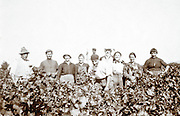 grape pickers posing in the vineyard 1900s France