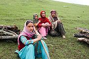 Trek to Harmukh mountain and Lake Gangabal, Kashmir Valley, Northern India 2009-07-12.<br />