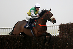 Sky Bet Winter Jumps Raceday - Doncaster Races - 09 January 2017
