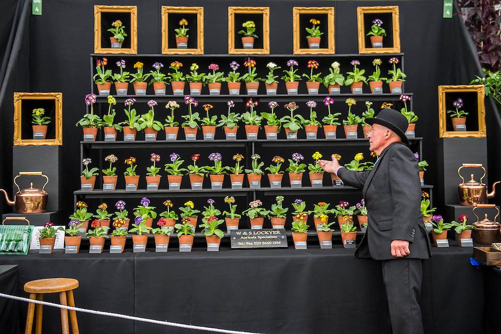 RHS Chelsea Flower Show, Chelsea Hospital, London UK, 18 May 2015.