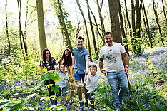 Bluebell woods mini shoots - Hodges