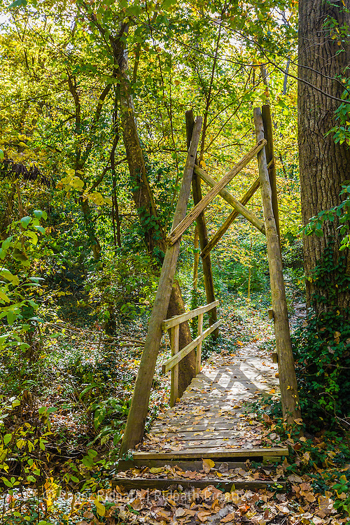 creek bridge Cave Spring Interpretive Center