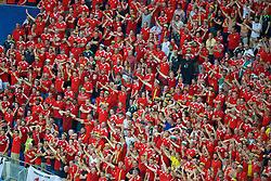 LYON, FRANCE - Wednesday, July 6, 2016: Wales supporters sing during the UEFA Euro 2016 Championship Semi-Final match against Portugal at the Stade de Lyon. (Pic by Paul Greenwood/Propaganda)