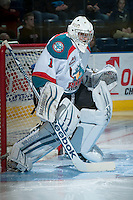 KELOWNA, CANADA -FEBRUARY 10:  Jackson Whistle #1 of the Kelowna Rockets stands in net against the Seattle Thunderbirds on February 10, 2014 at Prospera Place in Kelowna, British Columbia, Canada.   (Photo by Marissa Baecker/Getty Images)  *** Local Caption *** Jackson Whistle;