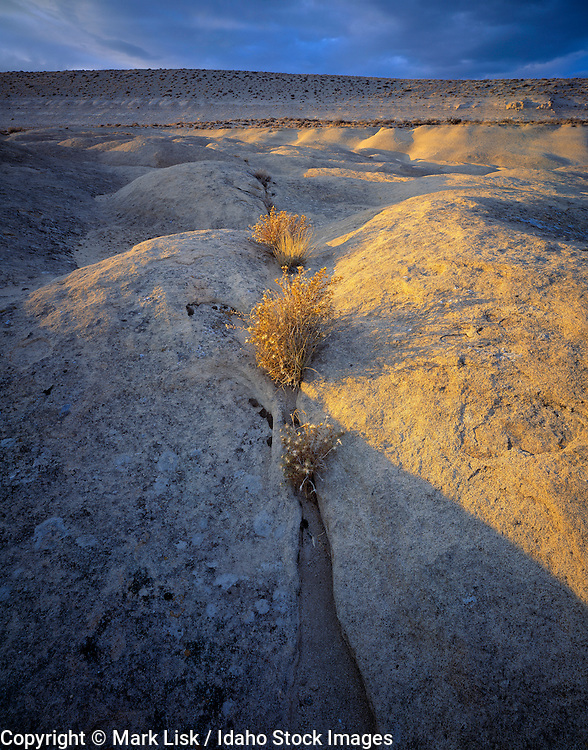 Petrified sand formations form a small plateau in the Owyhee, Canyonlands,  Desert, Idaho.