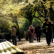 People going for a walk in Central Park in late October