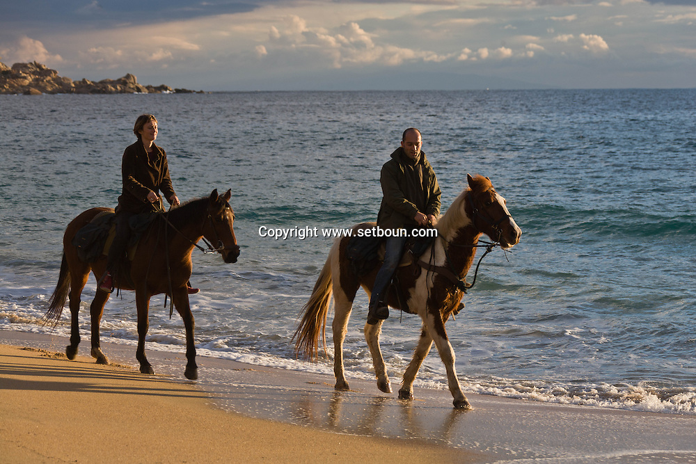 Corsica. France. horse riding in the mediteranean sea on the beach of tradicetto ,Corsica south  France    / randonnee a cheval sur la plage de Tradicetto,  au coucher du soleil  Corse du sud  France  /