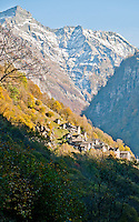 Golden autumn trees and mountain village in Valle Verzasca, Ticino, Southern Switzerland.