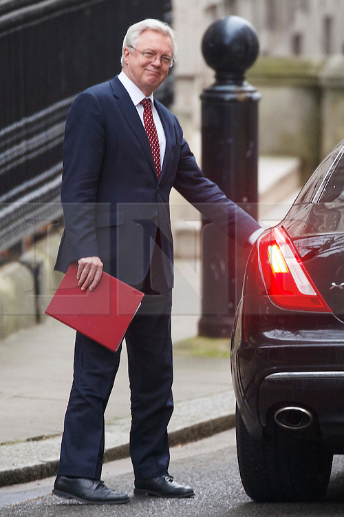 © Licensed to London News Pictures. 25/01/2017. London, UK. Secretary of State for Exiting the European Union DAVID DAVIS leaves Downing Street to attend Prime Minister's Question Time in House of Commons in London on 25 January 2017. Photo credit: Tolga Akmen/LNP