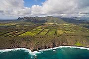 Kilauea farmland, Kauai, Hawaii