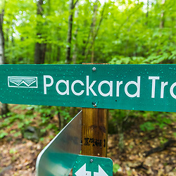 Hiking on the Packard Trail in the Virgil Parris Forest in Buckfield, Maine.