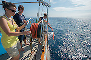 Viridiana Jimenez-Moratalla Pelhate, principal investigator for Cetacean Sanctuary Research cruise of Tethys Research Institute (right), and research interns Filippo Santini and Giulia Bergamaschi deploy towed hyrdrophone array used to locate cetaceans within the Pelagos Sanctuary for Mediterranean Marine Mammals, Ligurian Sea, Italy ( Mediterranean Sea )