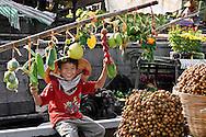 Vietnam images-market-fruit-Mekong delta hoàng thế nhiệm