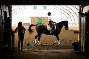 08/27/2013 -- GEORGETOWN, Mass. -- Phyllis LeBlanc, President and CEO of Salem, Mass.-based chocolate company Harbor Sweets, paces her dressage horse Chiron through a workout as her trainer Cindi Wylie checks her form at Quarterline Dressage in Georgetown, Mass., on Aug. 27, 2013. LeBlanc, who has 30 years of experience as a competitive dressage rider, says she finds comfort in the process of preparing a dressage horse. Riding involves core and leg strength, as well as fine motor control to maintain control of the horse, which Wylie compares to skiing. (Kelvin Ma for the Wall Street Journal)