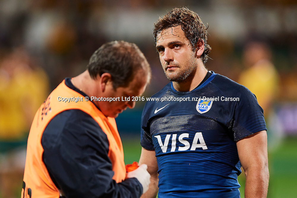 Nicolás Sánchez of the The Pumas (Argentina) is attended to by the medics during the Rugby Championship test match between the Australian Qantas Wallabies and Argentina's Los Pumas from NIB Stadium - Saturday 17th September 2016 in Perth, Australia. © Copyright Photo by Daniel Carson / www.photosport.nz)