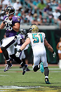 Jacksonville Jaguars middle linebacker Paul Posluszny (51) closes in as Baltimore Ravens tight end Dennis Pitta (88) jumps and catches a pass during the 2016 NFL week 3 regular season football game against the Baltimore Ravens on Sunday, Sept. 25, 2016 in Jacksonville, Fla. The Ravens won the game 19-17. (©Paul Anthony Spinelli)