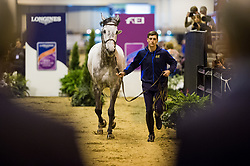Philippaerts Nicola, BEL, Harley van den Bisschop<br /> Horse Inspection <br /> Longines FEI World Cup Jumping Final, Omaha 2017 <br /> © Hippo Foto - Jon Stroud<br /> 28/03/2017