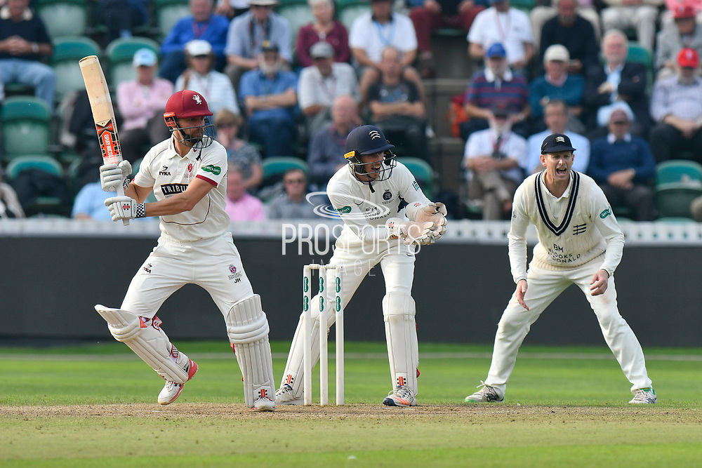 James Hildreth of Somerset batting during the Specsavers County Champ Div 1 match between Somerset County Cricket Club and Middlesex County Cricket Club at the Cooper Associates County Ground, Taunton, United Kingdom on 26 September 2017. Photo by Graham Hunt.