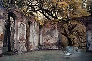Faux color infrared of Sheldon Church ruins near Charleston, SC