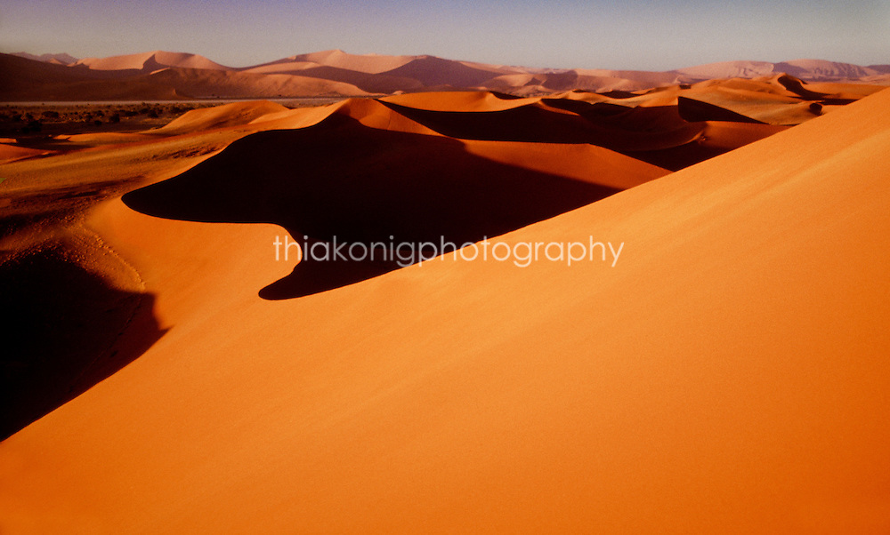 Looking out on the horizon of orange sand dunes of Sossusvlei, from the vantage of climbing a tall dune at sunrise, the Namib desert, Namibia, Africa