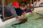 """Freshwater Farms of Ohio """"Sturgeon Petting Zoo"""" in Urbana, Ohio."""
