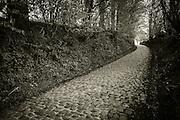 Koppenberg climb, Oudenaaarde, Flanders